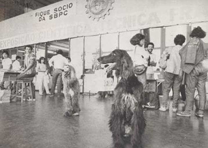 36º Reunião Anual SBPC, realizada na USP em 1984, São Paulo (SP) - Cachorros