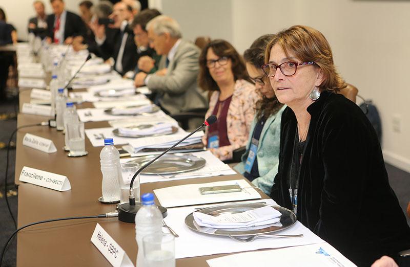 Helena Nader, presidente da SBPC, participa da reunião do Conselho Consultivo do MCTIC, em 01 de junho. (Foto: Ricardo Fonseca)